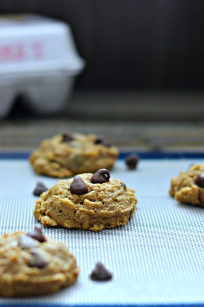 Pumpkin Oatmeal Chocolate Chip Cookies